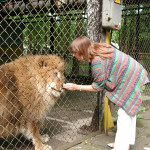 Lion and mad zookeeper who showed me around in Vitebsk, Belarus
