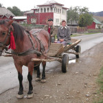 My transport up the valley with a local farmer in Gura Humorului, Romania
