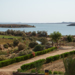 Looking out over Lake Nasser