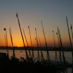 Felucca's at sunset