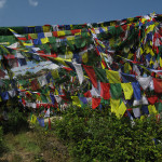 Prayer flags - you can never have too many!