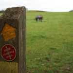 On the 1066 Country Walk